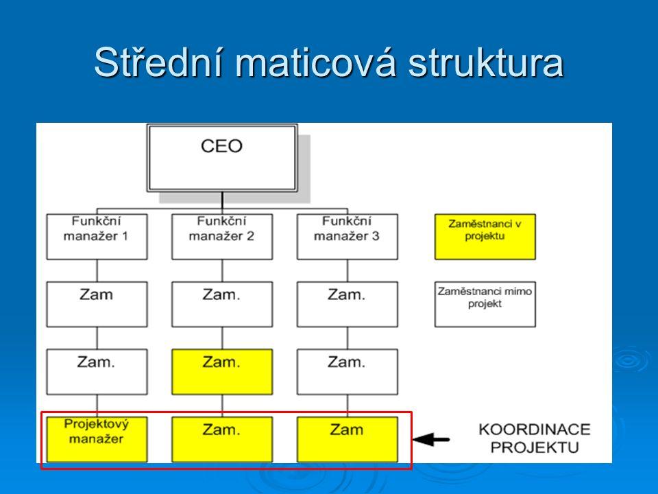 Střední maticová struktura