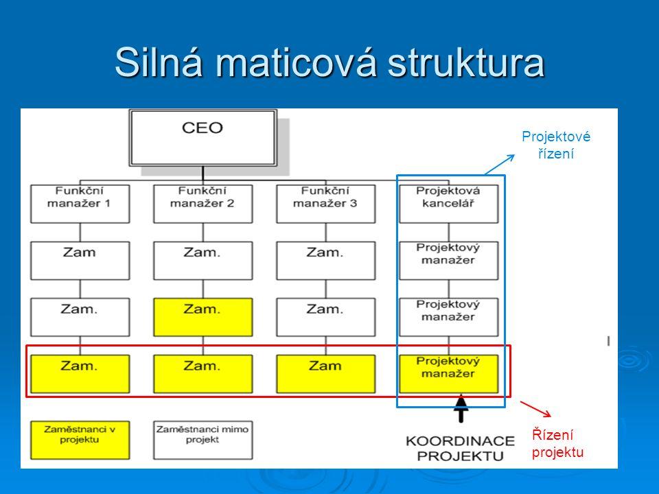 Silná maticová struktura Řízení projektu Projektové řízení