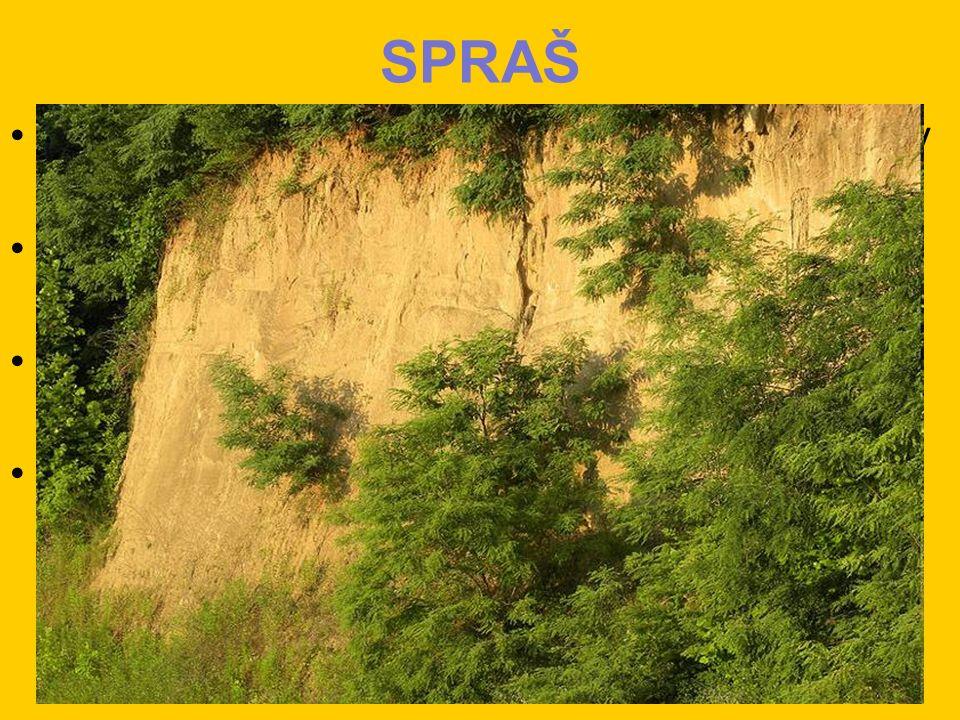SPRAŠ tvořená jemnými částicemi, které jsou unášeny na velké vzdálenosti obsahuje křemitý prach (křemen, živce, slída) jílové nerosty a uhličitan vápenatý na spraších se vytváří velmi úrodné půdy – černozemě vyskytují se i v České republice, zejména v nížinách jižní Moravy