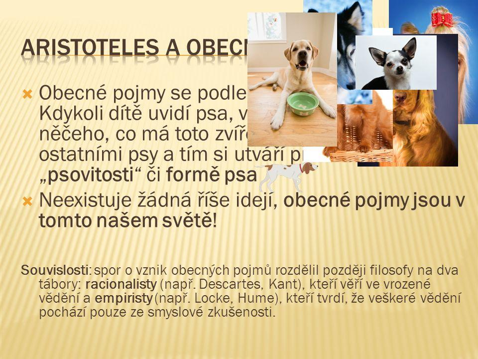  Obecné pojmy se podle Aristotela tvoří takto: Kdykoli dítě uvidí psa, všimne si pokaždé něčeho, co má toto zvíře společného s ostatními psy a tím si