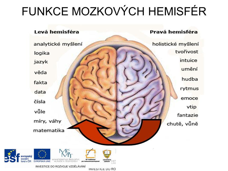 FUNKCE MOZKOVÝCH HEMISFÉR