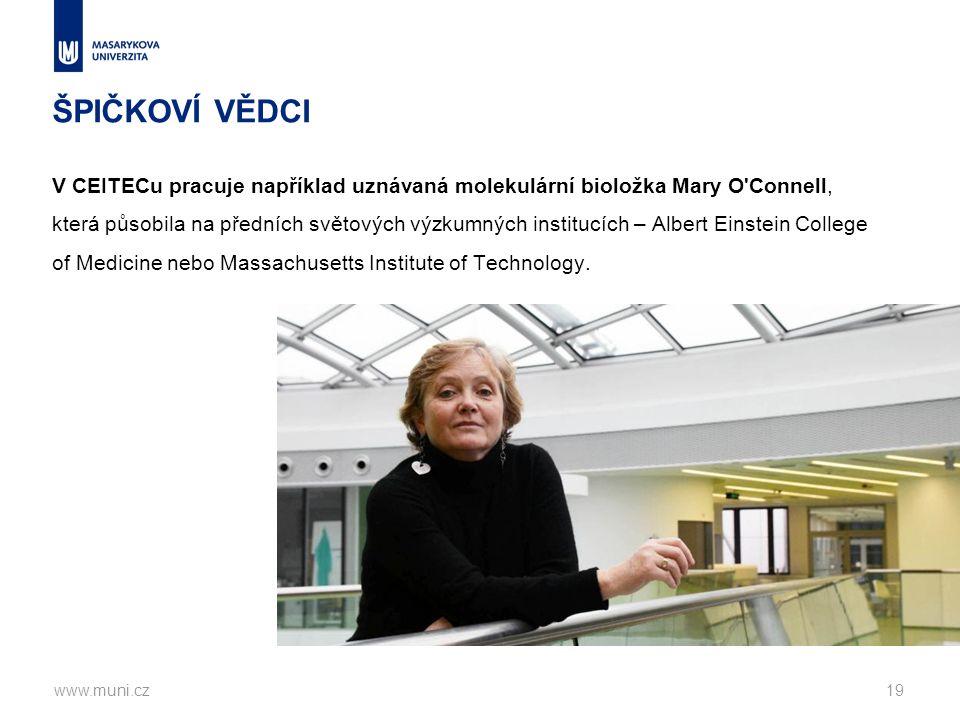 ŠPIČKOVÍ VĚDCI V CEITECu pracuje například uznávaná molekulární bioložka Mary O Connell, která působila na předních světových výzkumných institucích – Albert Einstein College of Medicine nebo Massachusetts Institute of Technology.