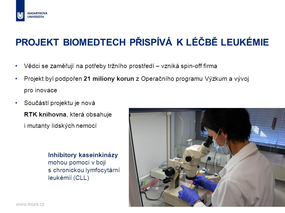 PROJEKT BIOMEDTECH PŘISPÍVÁ K LÉČBĚ LEUKÉMIE Vědci se zaměřují na potřeby tržního prostředí – vzniká spin-off firma Projekt byl podpořen 21 miliony korun z Operačního programu Výzkum a vývoj pro inovace Součástí projektu je nová RTK knihovna, která obsahuje i mutanty lidských nemocí www.muni.cz23 Inhibitory kaseinkinázy mohou pomoci v boji s chronickou lymfocytární leukémií (CLL)