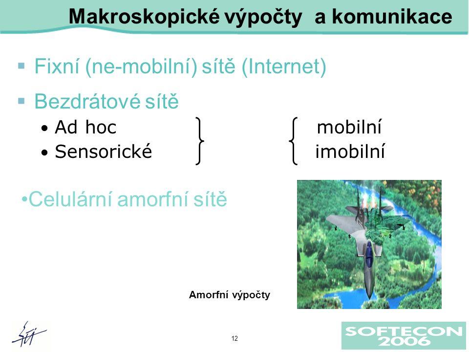 12 Makroskopické výpočty a komunikace  Fixní (ne-mobilní) sítě (Internet)  Bezdrátové sítě Ad hoc mobilní Sensorické imobilní Amorfní výpočty Celulární amorfní sítě