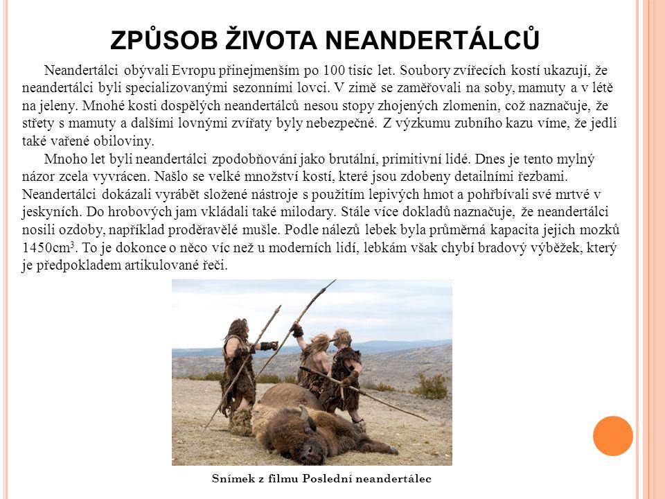 ZPŮSOB ŽIVOTA NEANDERTÁLCŮ Neandertálci obývali Evropu přinejmenším po 100 tisíc let.