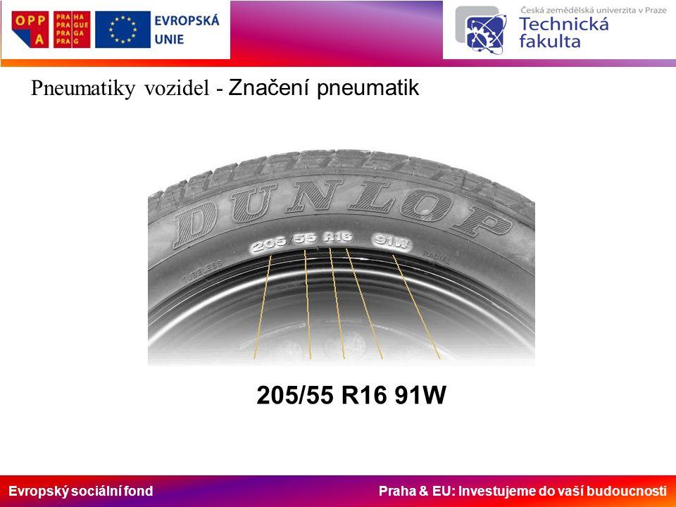 Evropský sociální fond Praha & EU: Investujeme do vaší budoucnosti Pneumatiky vozidel - Značení pneumatik 205/55 R16 91W
