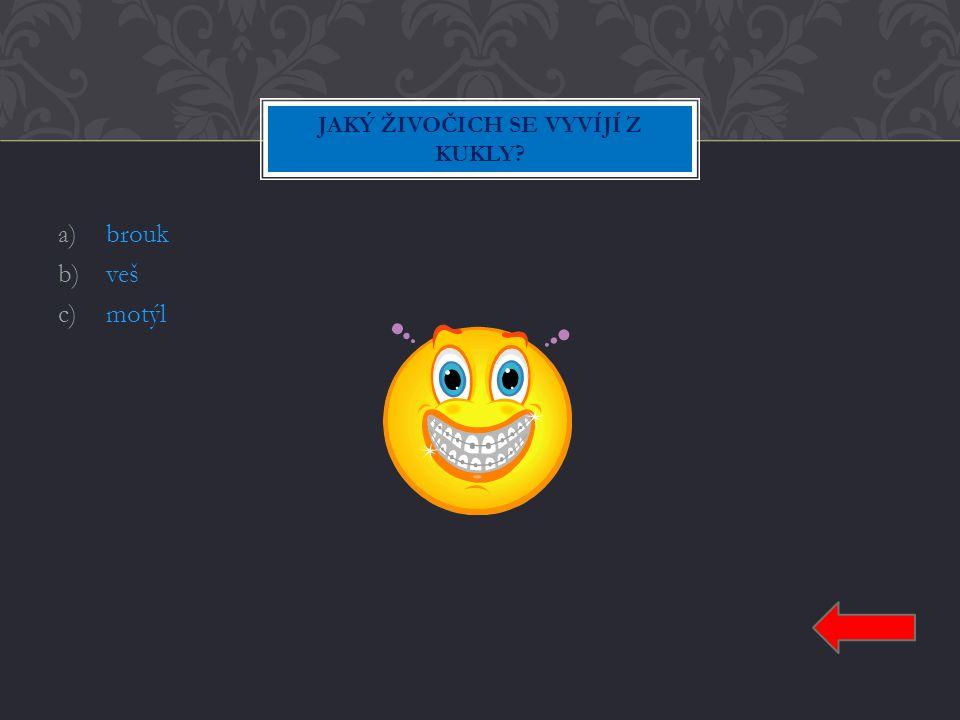 a)Jan b)Jakub c)Jiří Jan SYN JAK SE JMENUJE SYN ZDEŇKA SVĚRÁKA ?