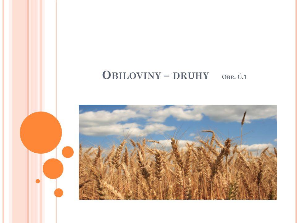 O BILOVINY – DRUHY O BR. Č.1 OBR. Č. 1