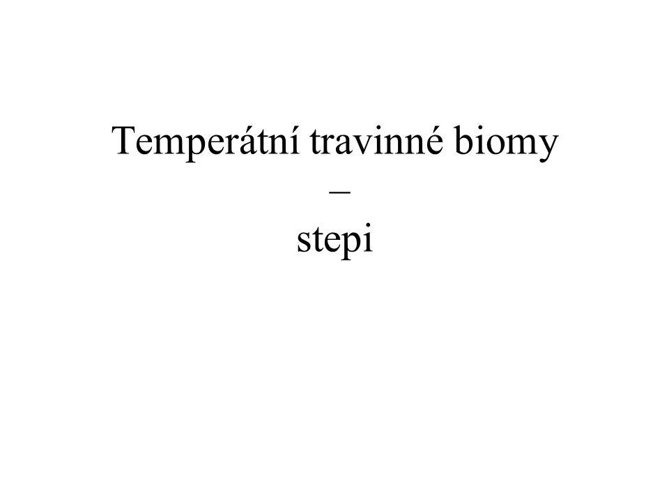 Temperátní travinné biomy – stepi