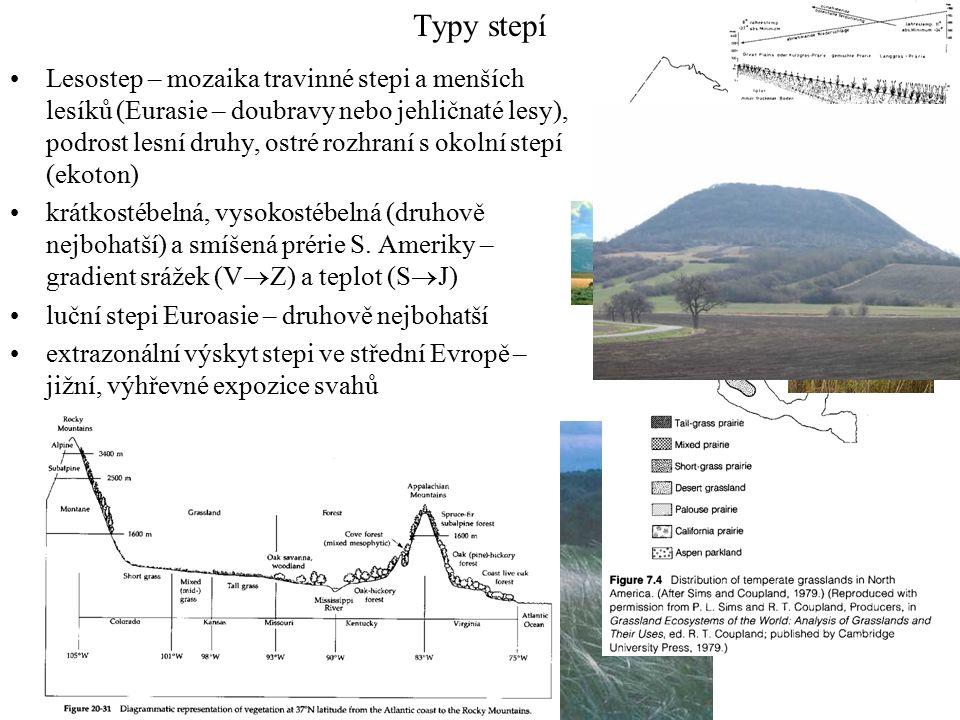 Typy stepí Lesostep – mozaika travinné stepi a menších lesíků (Eurasie – doubravy nebo jehličnaté lesy), podrost lesní druhy, ostré rozhraní s okolní stepí (ekoton) krátkostébelná, vysokostébelná (druhově nejbohatší) a smíšená prérie S.