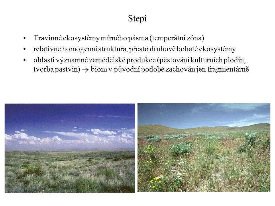 Stepi Travinné ekosystémy mírného pásma (temperátní zóna) relativně homogenní struktura, přesto druhově bohaté ekosystémy oblasti významné zemědělské produkce (pěstování kulturních plodin, tvorba pastvin)  biom v původní podobě zachován jen fragmentárně