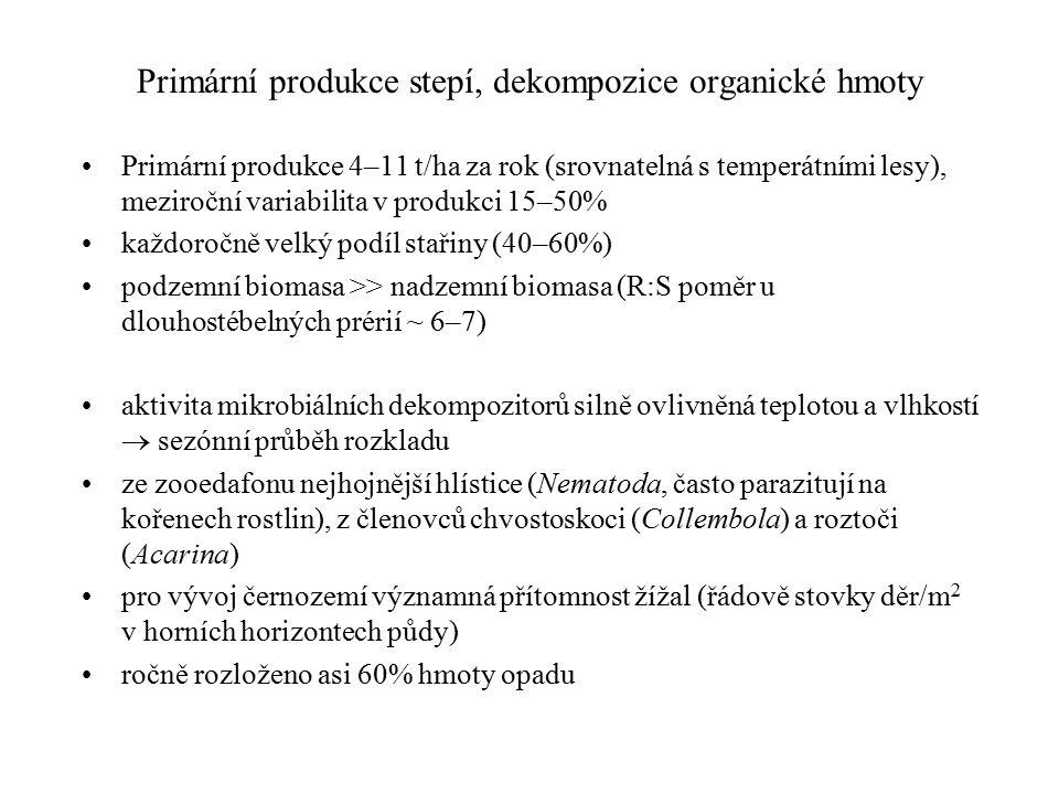 Primární produkce stepí, dekompozice organické hmoty Primární produkce 4–11 t/ha za rok (srovnatelná s temperátními lesy), meziroční variabilita v produkci 15–50% každoročně velký podíl stařiny (40–60%) podzemní biomasa >> nadzemní biomasa (R:S poměr u dlouhostébelných prérií ~ 6–7) aktivita mikrobiálních dekompozitorů silně ovlivněná teplotou a vlhkostí  sezónní průběh rozkladu ze zooedafonu nejhojnější hlístice (Nematoda, často parazitují na kořenech rostlin), z členovců chvostoskoci (Collembola) a roztoči (Acarina) pro vývoj černozemí významná přítomnost žížal (řádově stovky děr/m 2 v horních horizontech půdy) ročně rozloženo asi 60% hmoty opadu