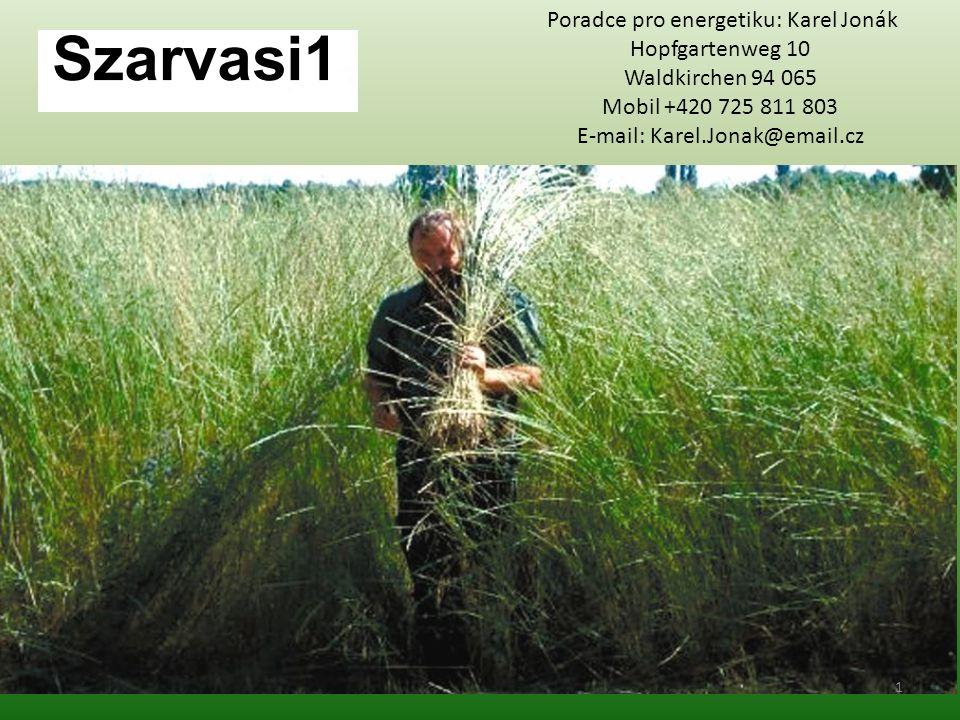Druh: Switchgrass (Rutenhirse) Vlastnosti: pěstování z osiva trvalka roste až do výšky 3 metrů z pružné čepele má později tendenci zdřevěnět rozsáhlý kořenový systém suchomilná rostlina mrazuvzdorná rostlina pěstování pro trh dvoj jaderná rostlina 12