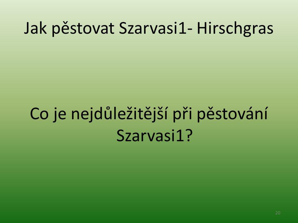 Jak pěstovat Szarvasi1- Hirschgras Co je nejdůležitější při pěstování Szarvasi1? 20