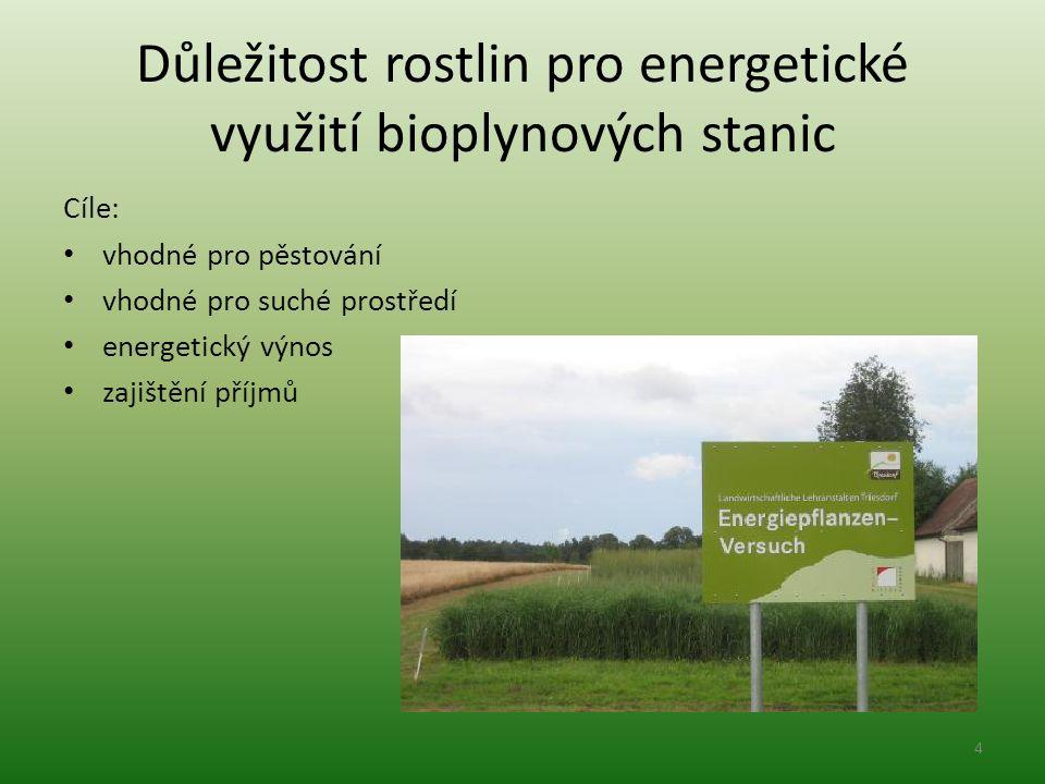 Důležitost rostlin pro energetické využití bioplynových stanic Cíle: vhodné pro pěstování vhodné pro suché prostředí energetický výnos zajištění příjmů 4