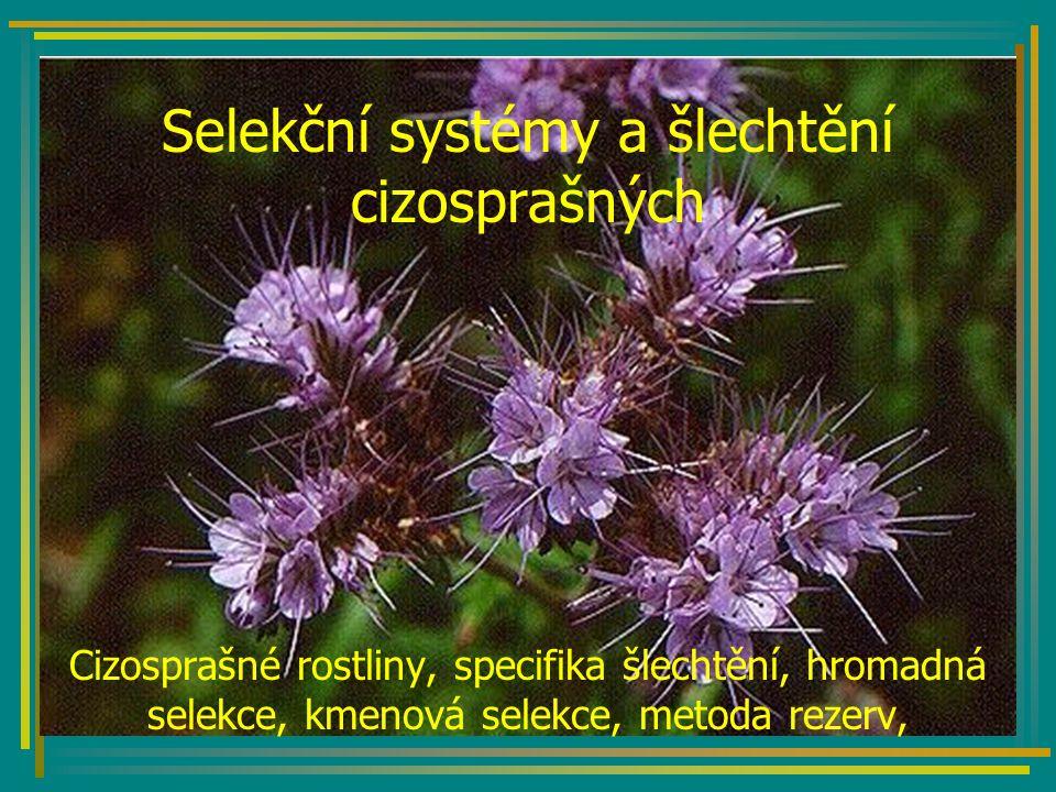 Selekční systémy a šlechtění cizosprašných Cizosprašné rostliny, specifika šlechtění, hromadná selekce, kmenová selekce, metoda rezerv,