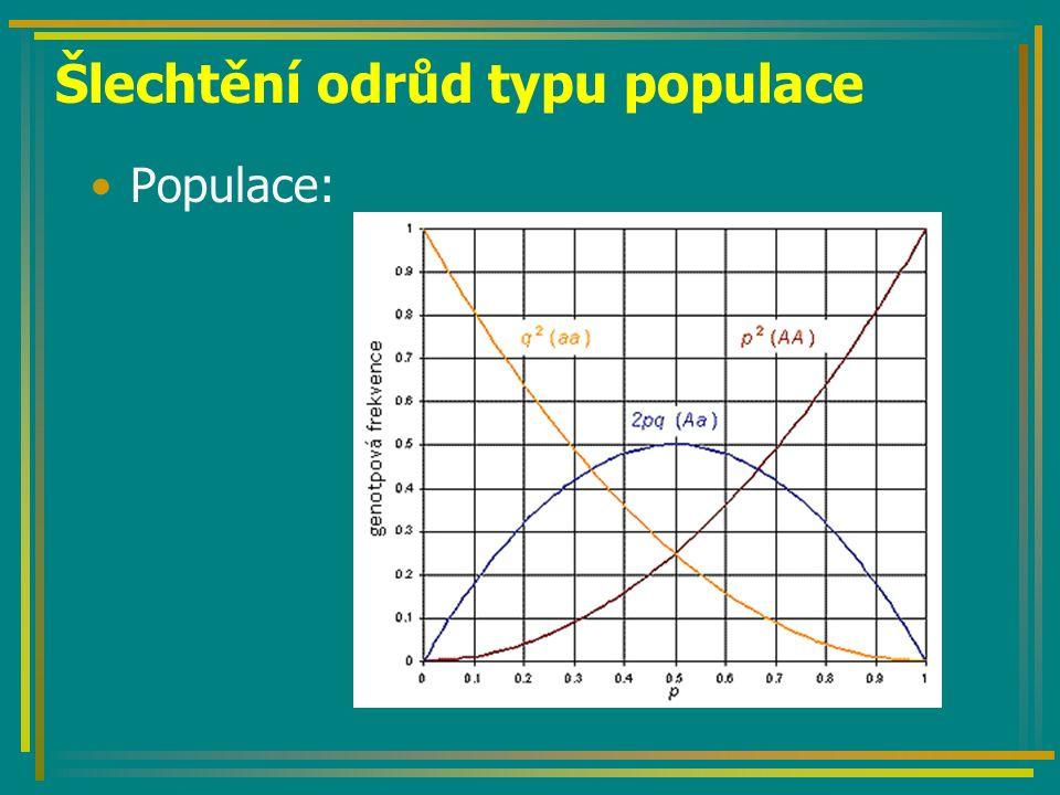 Šlechtění odrůd typu populace Populace: