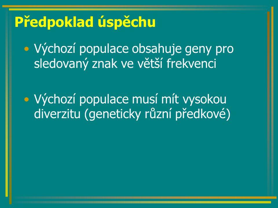 Předpoklad úspěchu Výchozí populace obsahuje geny pro sledovaný znak ve větší frekvenci Výchozí populace musí mít vysokou diverzitu (geneticky různí p