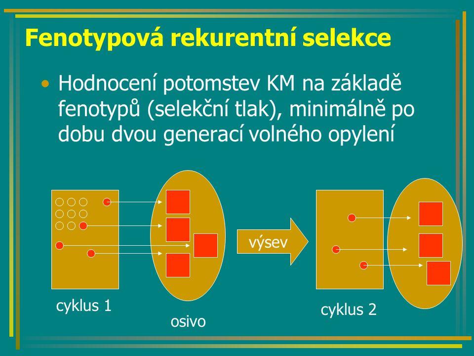Fenotypová rekurentní selekce Hodnocení potomstev KM na základě fenotypů (selekční tlak), minimálně po dobu dvou generací volného opylení osivo výsev