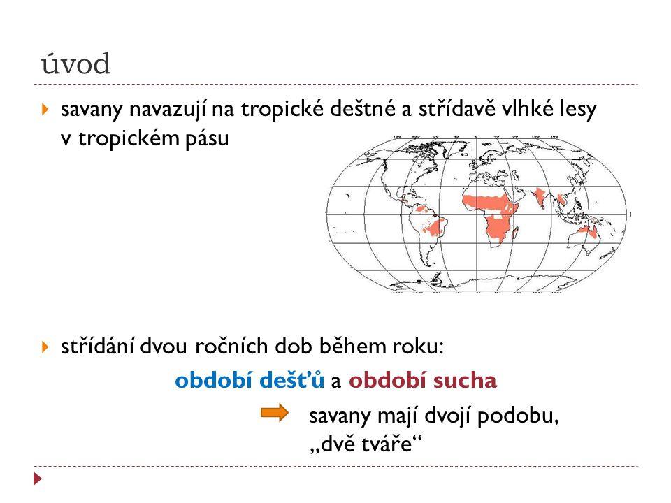 úvod  savany navazují na tropické deštné a střídavě vlhké lesy v tropickém pásu  střídání dvou ročních dob během roku: období dešťů a období sucha s