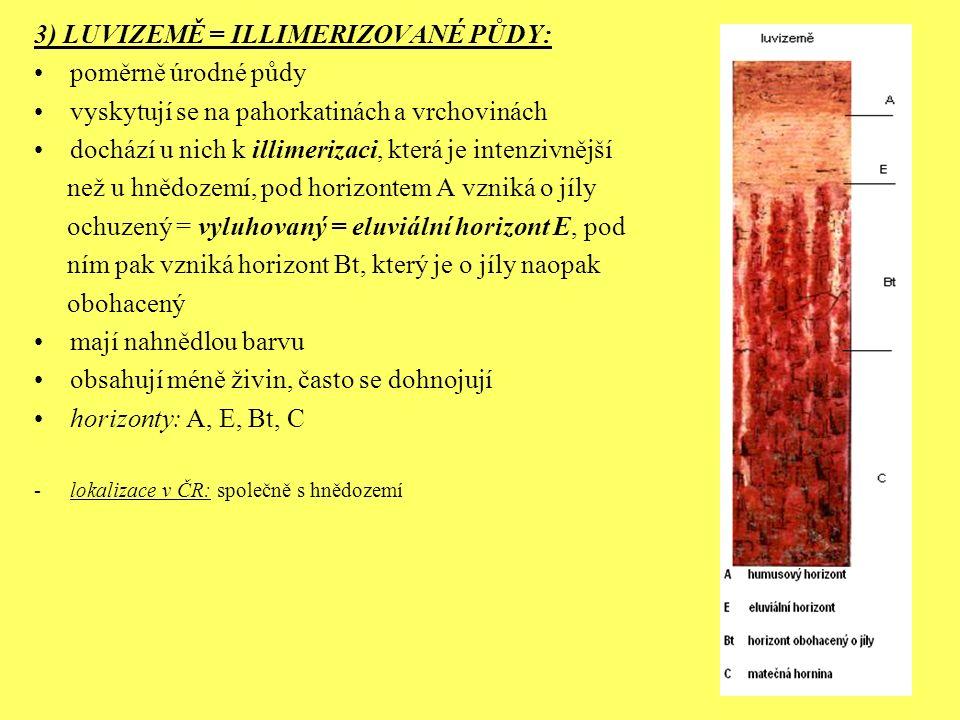 3) LUVIZEMĚ = ILLIMERIZOVANÉ PŮDY: poměrně úrodné půdy vyskytují se na pahorkatinách a vrchovinách dochází u nich k illimerizaci, která je intenzivněj