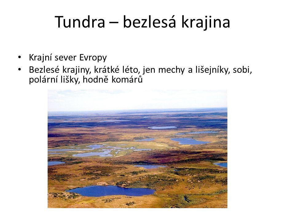 Tundra – bezlesá krajina Krajní sever Evropy Bezlesé krajiny, krátké léto, jen mechy a lišejníky, sobi, polární lišky, hodně komárů