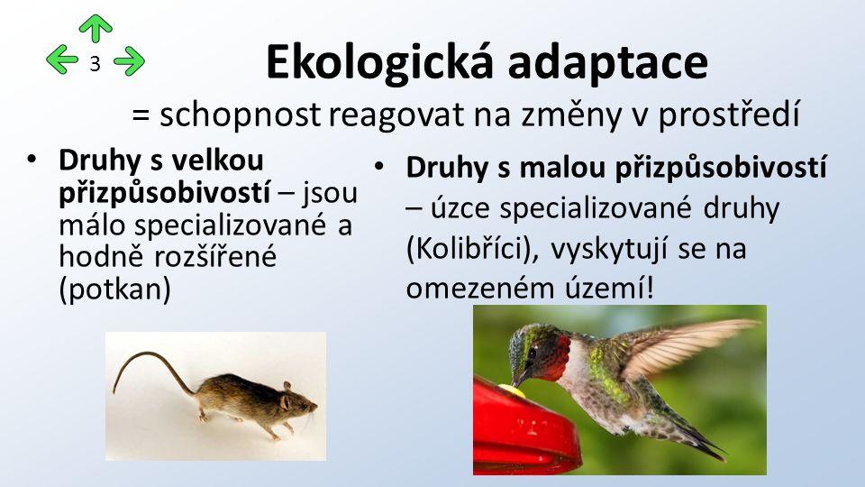 Ekologická adaptace Druhy s velkou přizpůsobivostí – jsou málo specializované a hodně rozšířené (potkan) Druhy s malou přizpůsobivostí – úzce specializované druhy (Kolibříci), vyskytují se na omezeném území.
