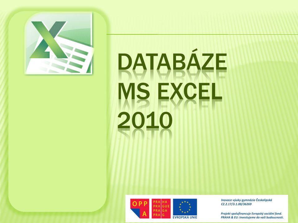 Pořízení dat Databázové funkce Řazení Filtrování Souhrny Kontingenční tabulky Kontingenční grafy
