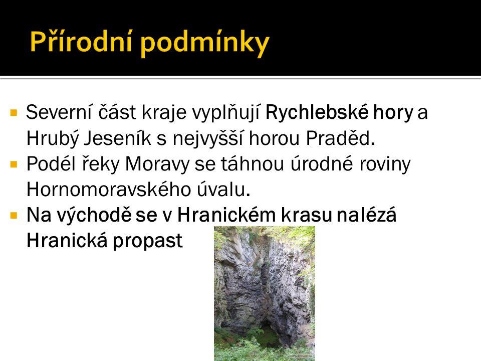  Severní část kraje vyplňují Rychlebské hory a Hrubý Jeseník s nejvyšší horou Praděd.