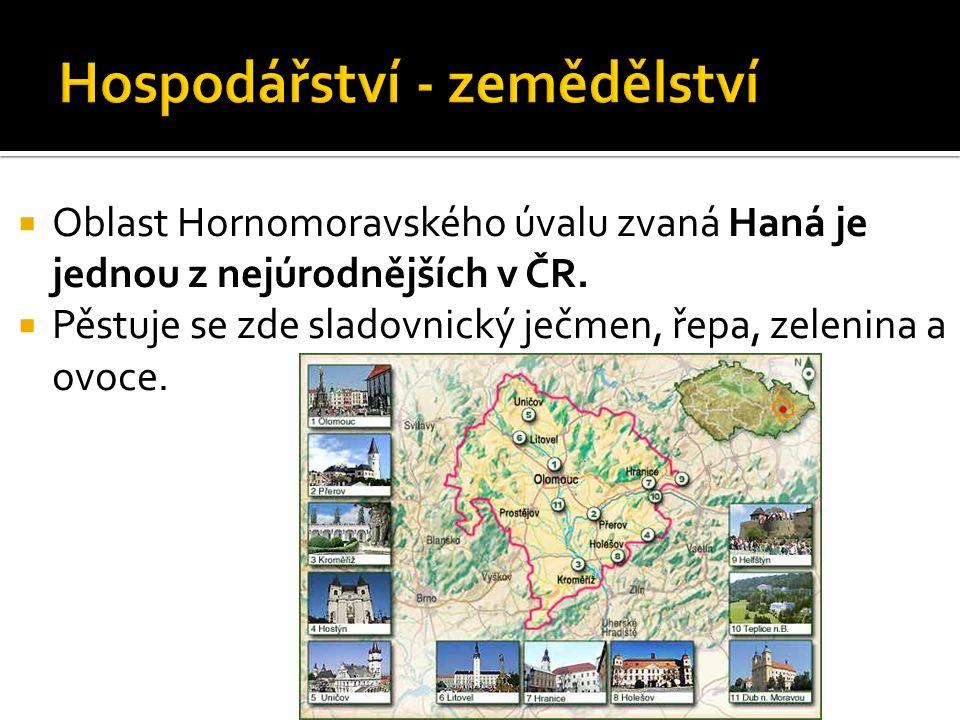  Oblast Hornomoravského úvalu zvaná Haná je jednou z nejúrodnějších v ČR.