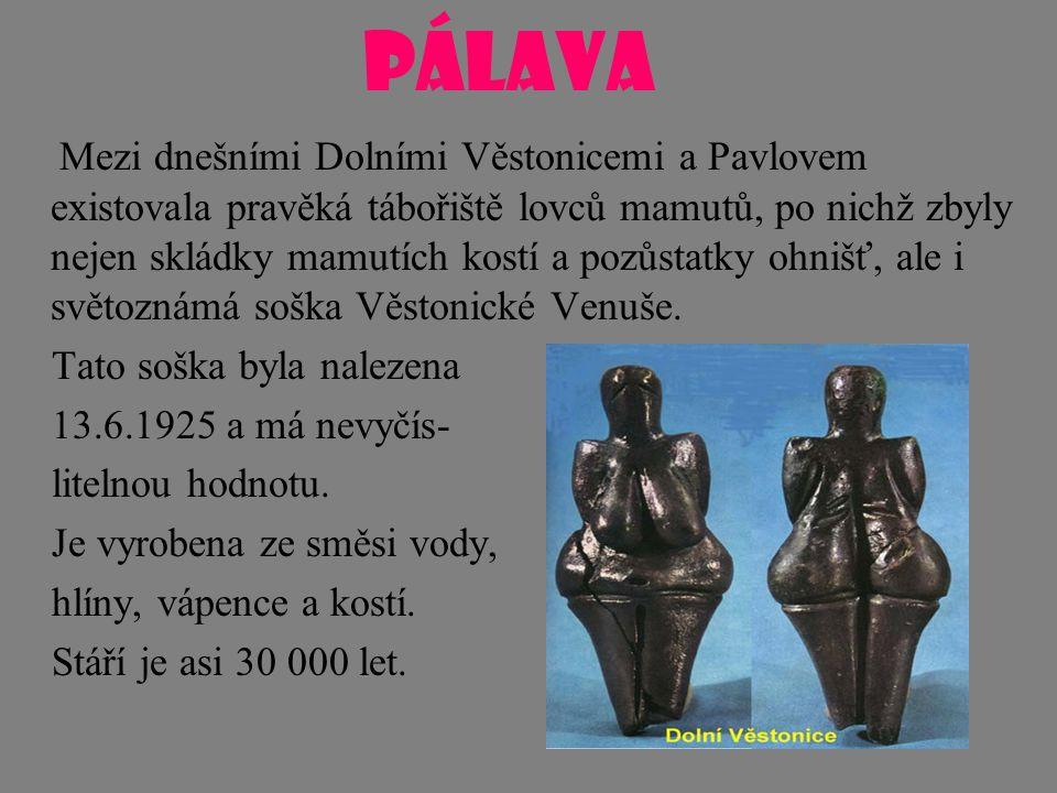 PÁLAVA Mezi dnešními Dolními Věstonicemi a Pavlovem existovala pravěká tábořiště lovců mamutů, po nichž zbyly nejen skládky mamutích kostí a pozůstatky ohnišť, ale i světoznámá soška Věstonické Venuše.