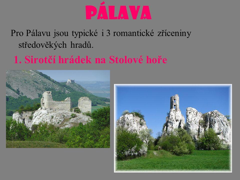 PÁLAVA Pro Pálavu jsou typické i 3 romantické zříceniny středověkých hradů. 1. Sirotčí hrádek na Stolové hoře
