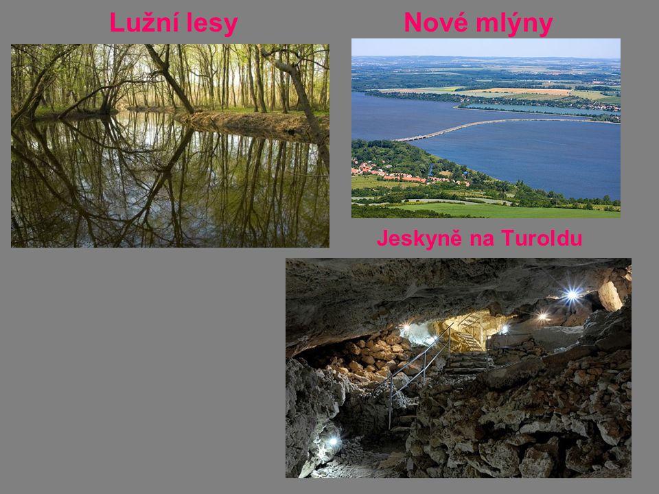 Lužní lesy Nové mlýny Jeskyně na Turoldu