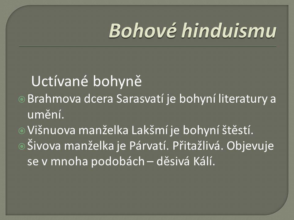 Uctívané bohyně  Brahmova dcera Sarasvatí je bohyní literatury a umění.