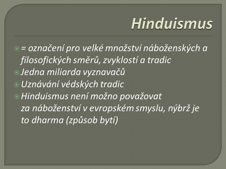  = označení pro velké množství náboženských a filosofických směrů, zvyklostí a tradic  Jedna miliarda vyznavačů  Uznávání védských tradic  Hinduismus není možno považovat za náboženství v evropském smyslu, nýbrž je to dharma (způsob bytí)
