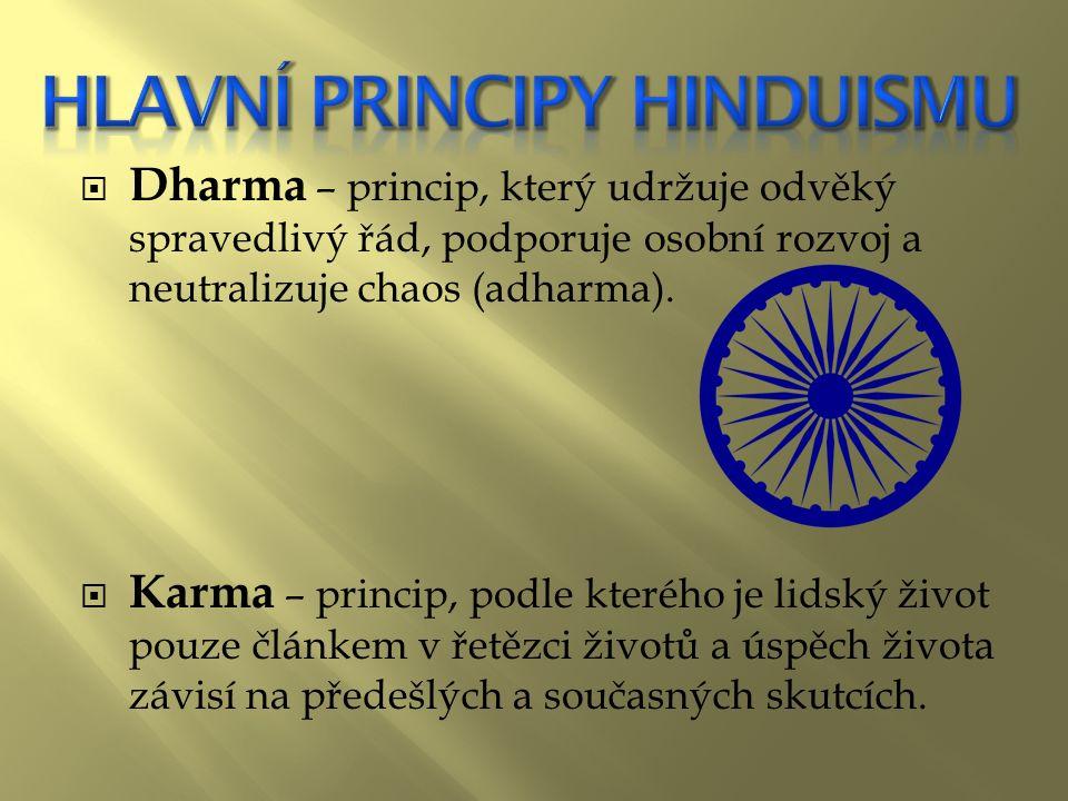  Dharma – princip, který udržuje odvěký spravedlivý řád, podporuje osobní rozvoj a neutralizuje chaos (adharma).