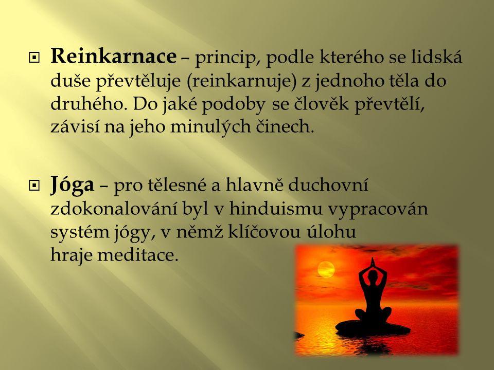  Reinkarnace – princip, podle kterého se lidská duše převtěluje (reinkarnuje) z jednoho těla do druhého.