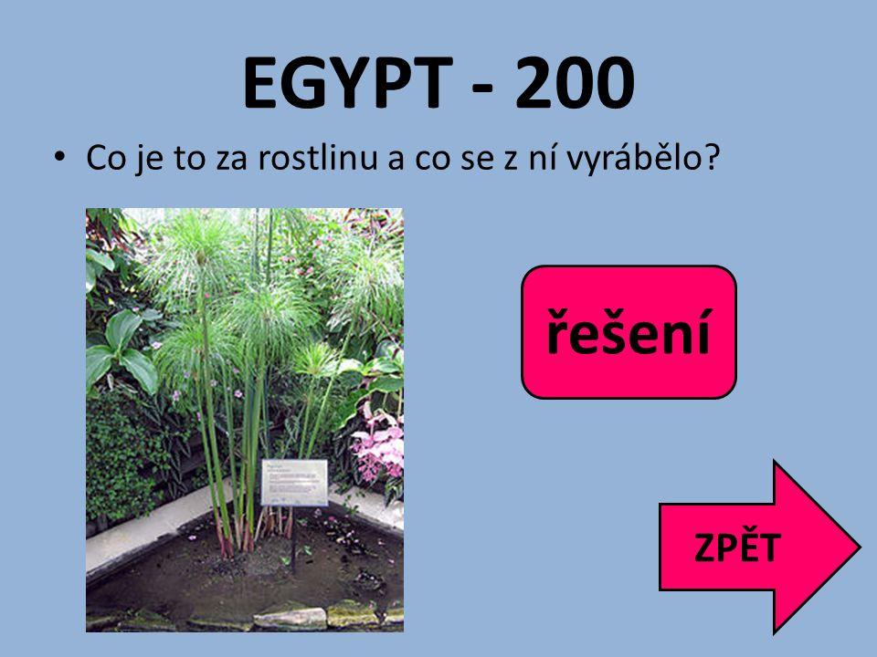 EGYPT - 200 Co je to za rostlinu a co se z ní vyrábělo? ZPĚT Papyrus, papír řešení