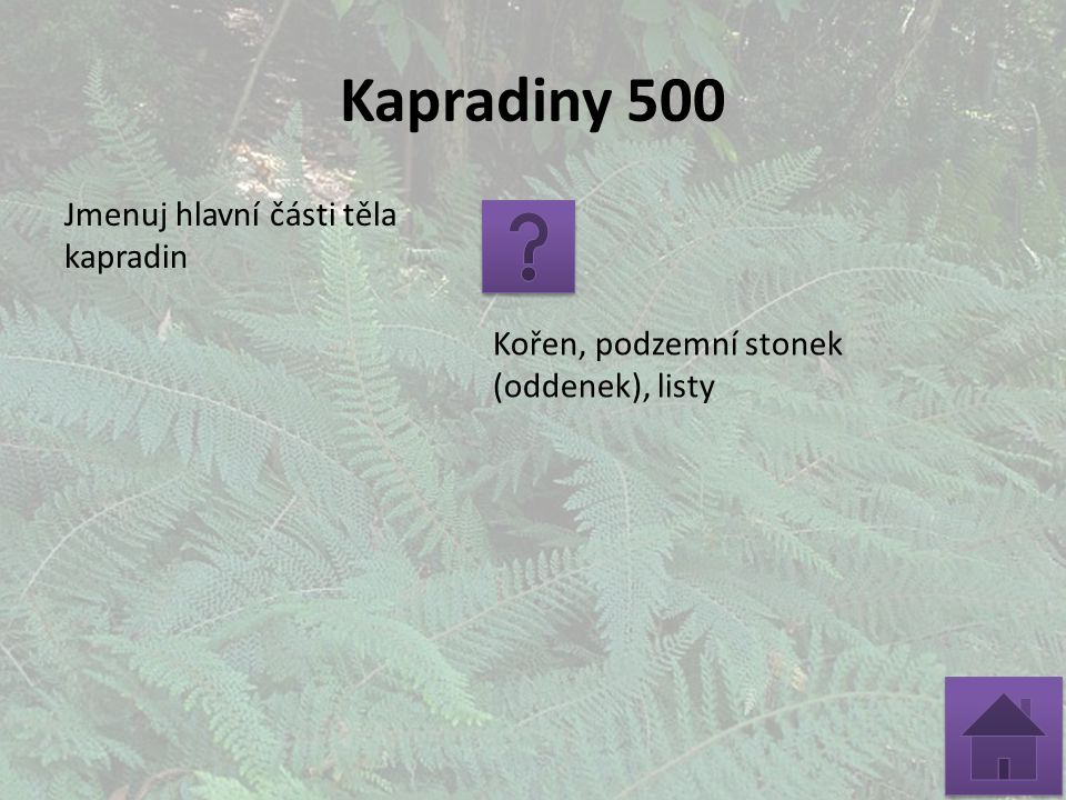 Kapradiny 500 Jmenuj hlavní části těla kapradin Kořen, podzemní stonek (oddenek), listy
