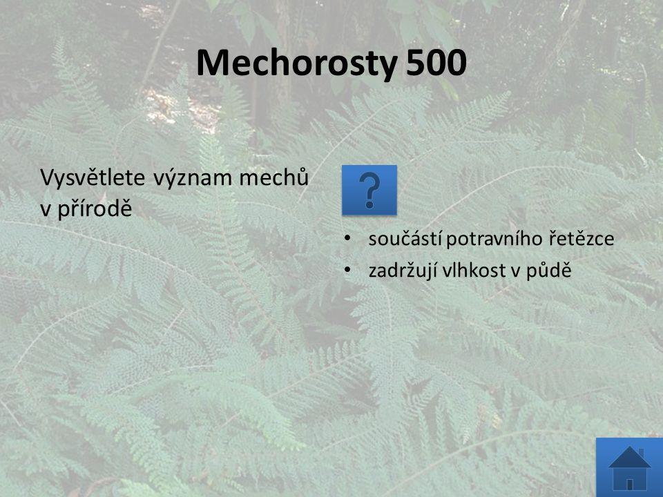 Mechorosty 1000 U mechorostů: a)převažuje gametofyt nad sporofytem b)převažuje sporofyt nad gametofytem c)jsou sporofyt a gametofyt vyrovnané Správná je odpověď a)