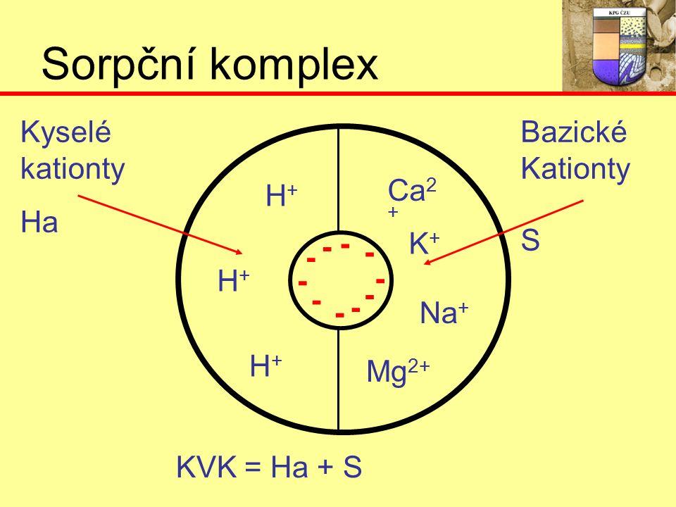 Sorpční komplex - - - - - - - - - - K+K+ Na + Mg 2+ Ca 2 + H+H+ H+H+ H+H+ Kyselé kationty Ha Bazické Kationty S KVK = Ha + S