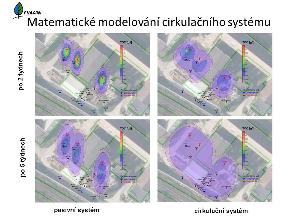 Matematické modelování cirkulačního systému pasivní systém cirkulační systém po 2 týdnech po 5 týdnech