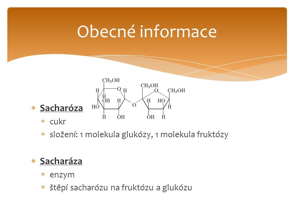  Sacharóza  cukr  složení: 1 molekula glukózy, 1 molekula fruktózy  Sacharáza  enzym  štěpí sacharózu na fruktózu a glukózu Obecné informace