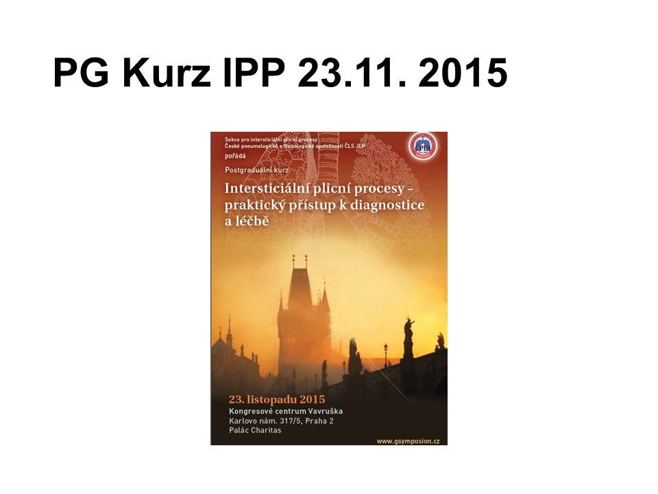 PG Kurz IPP 23.11. 2015