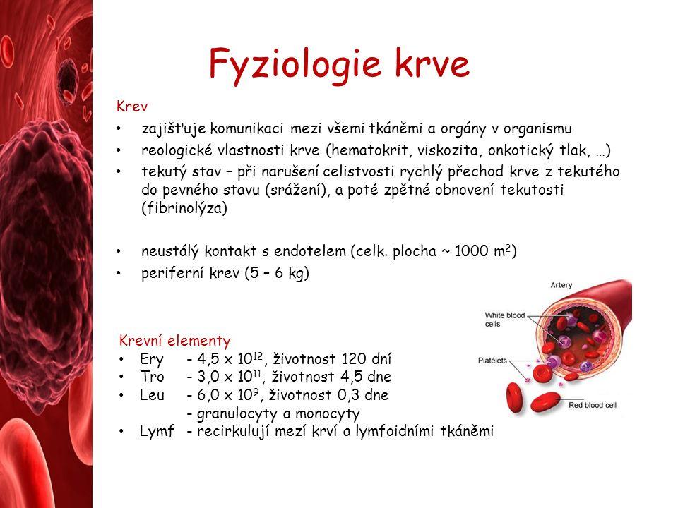 Fyziologie krve Krev zajišťuje komunikaci mezi všemi tkáněmi a orgány v organismu reologické vlastnosti krve (hematokrit, viskozita, onkotický tlak, …) tekutý stav – při narušení celistvosti rychlý přechod krve z tekutého do pevného stavu (srážení), a poté zpětné obnovení tekutosti (fibrinolýza) neustálý kontakt s endotelem (celk.