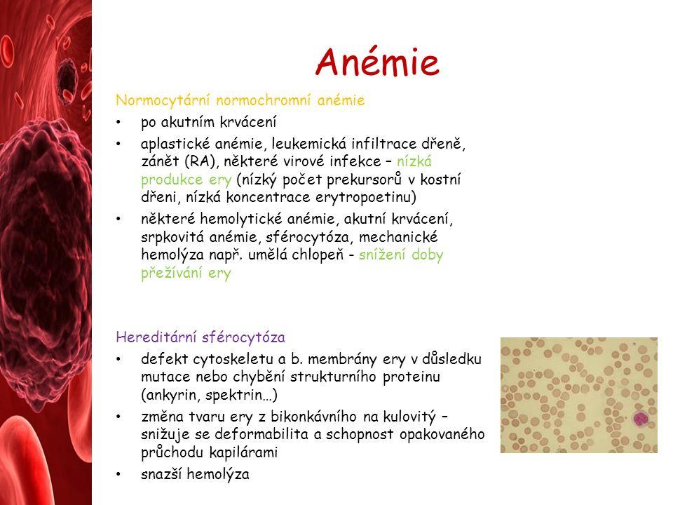 Anémie Normocytární normochromní anémie po akutním krvácení aplastické anémie, leukemická infiltrace dřeně, zánět (RA), některé virové infekce – nízká produkce ery (nízký počet prekursorů v kostní dřeni, nízká koncentrace erytropoetinu) některé hemolytické anémie, akutní krvácení, srpkovitá anémie, sférocytóza, mechanické hemolýza např.