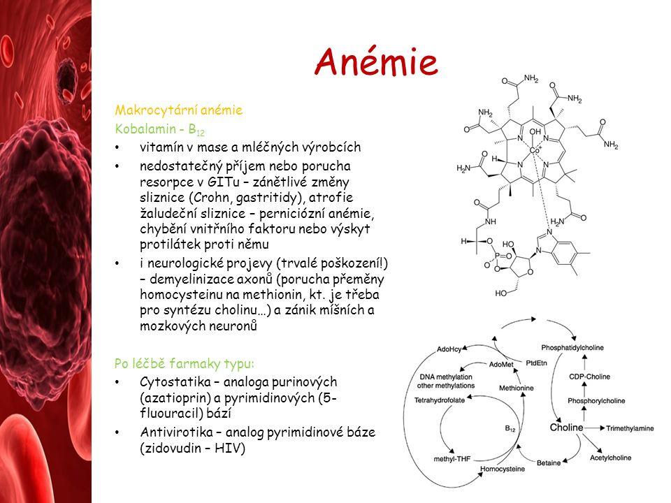 Anémie Makrocytární anémie Kobalamin - B 12 vitamín v mase a mléčných výrobcích nedostatečný příjem nebo porucha resorpce v GITu – zánětlivé změny sliznice (Crohn, gastritidy), atrofie žaludeční sliznice – perniciózní anémie, chybění vnitřního faktoru nebo výskyt protilátek proti němu i neurologické projevy (trvalé poškození!) – demyelinizace axonů (porucha přeměny homocysteinu na methionin, kt.