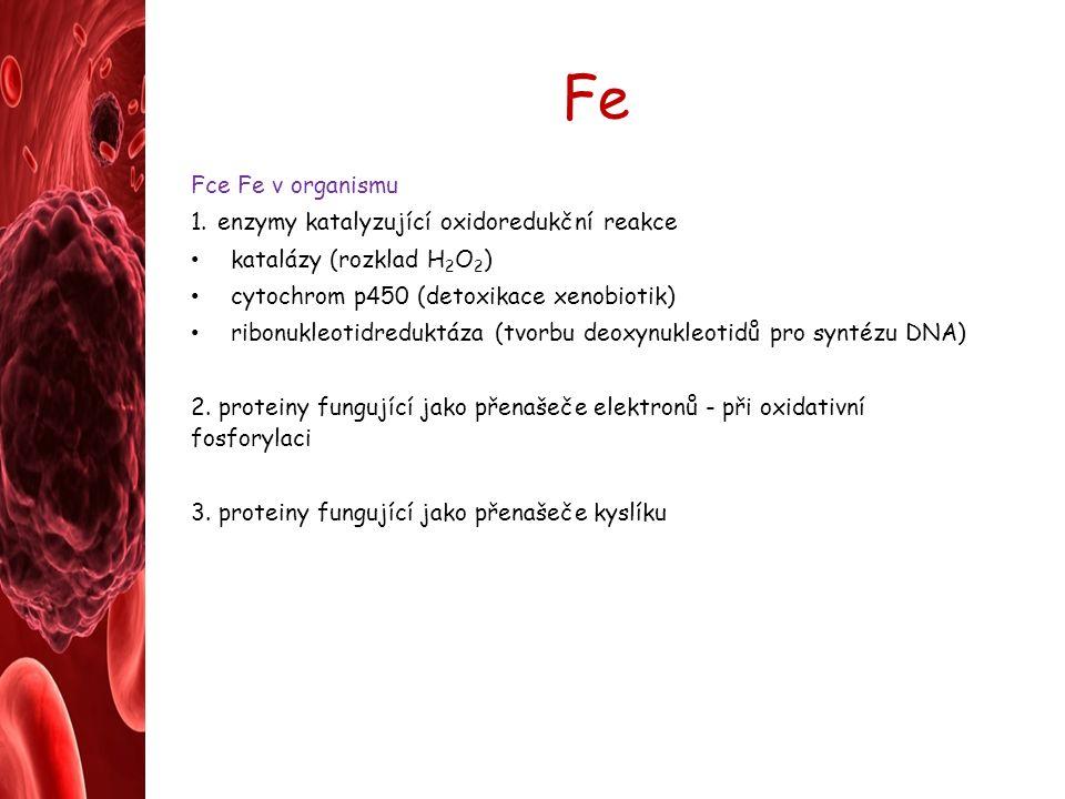 Fe Fce Fe v organismu 1.enzymy katalyzující oxidoredukční reakce katalázy (rozklad H 2 O 2 ) cytochrom p450 (detoxikace xenobiotik) ribonukleotidreduktáza (tvorbu deoxynukleotidů pro syntézu DNA) 2.