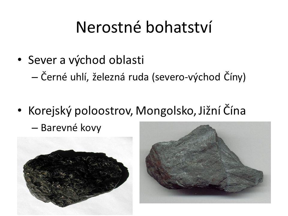 Nerostné bohatství Sever a východ oblasti – Černé uhlí, železná ruda (severo-východ Číny) Korejský poloostrov, Mongolsko, Jižní Čína – Barevné kovy