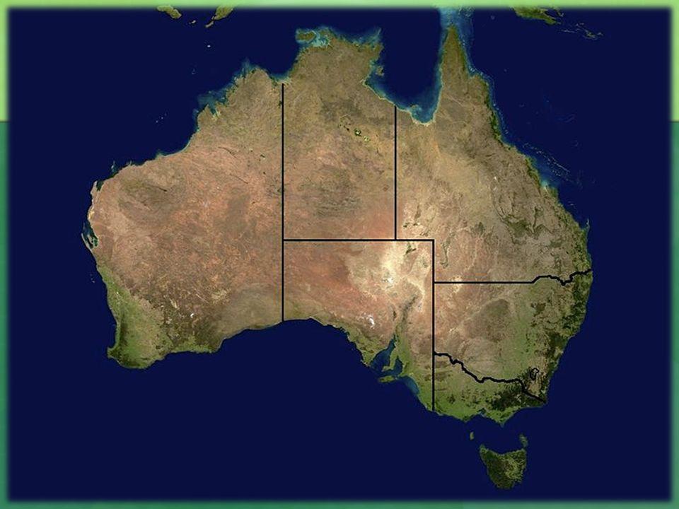 Povrch Západoaustralská tabule Zarovnaný reliéf, rozsáhlé pouště (Velká písečná poušť, Gibsonova a Velká Viktoriina poušť, pohoří MacDonnellovo a Musgraveovo Středoaustralská pánev Od S po J pobřeží, pás rovin Východoaustralské pohoří Neboli Velké předělové pohoří, lemuje východní pobřeží, pokračuje na ostrov Tasmánie, Australské Alpy (Mt.Kosciusko)